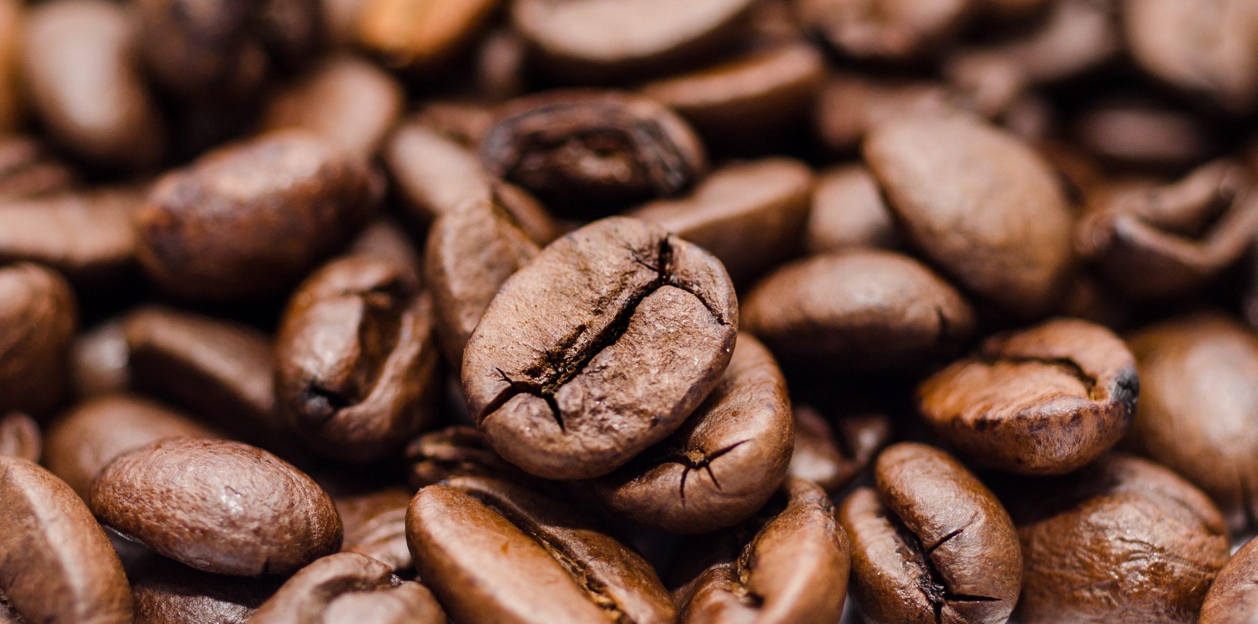 Wie zit er achter het koffiemerk Segafredo?